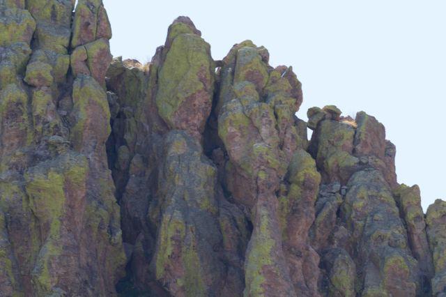 rocks-1158