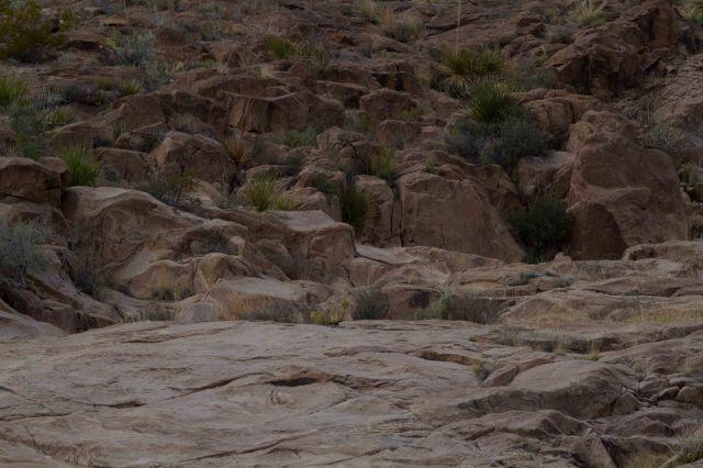 rocks2-3970